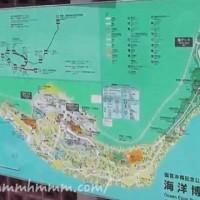 沖縄海洋博公園の全体地図