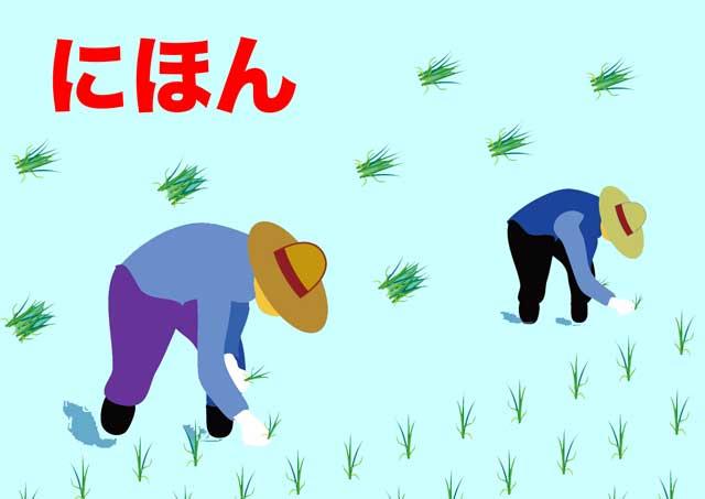 日本の田植え