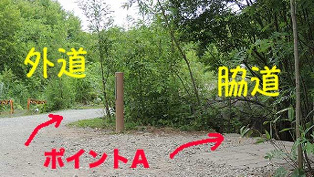 美瑛の青い池 外道と小道の分岐点
