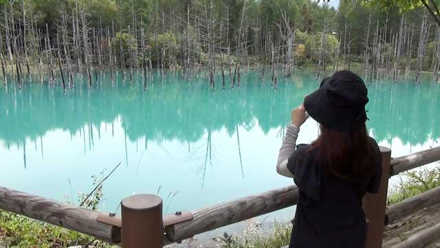 美瑛の青い池 ポイントBからの景色