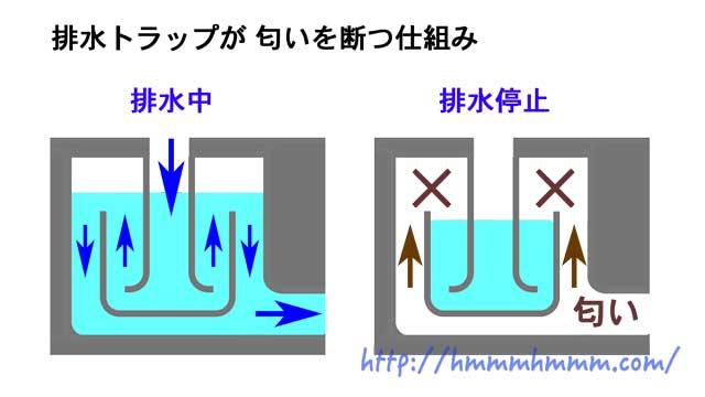 洗濯機の排水トラップが匂いを断つ仕組み